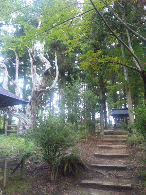 長野にいます。